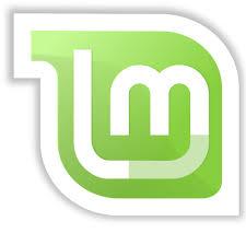 Read more about the article Linux Mint 20 auf dem USB-Stick?